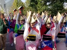 soda-japonismes2018-009.jpg