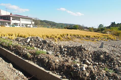 sanriku-international-arts-festival_03.jpg