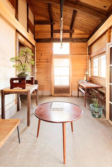 http://www.wochikochi.jp/serialessay/bonsai_01_02.jpg